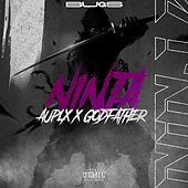 Ninja von Auplx