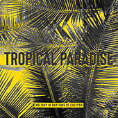 Tropical Paradise: Holiday in Rhythms of Calypso by Various Artists
