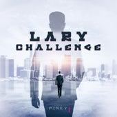 Lary Challenge de Pinky