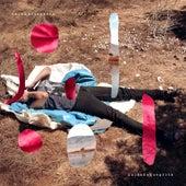 Cuidado Que Grita (Edición Especial) de Colombina Parra