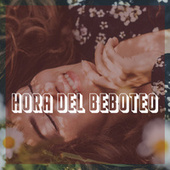 Hora del beboteo by Various Artists