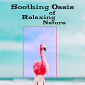 Soothing Oasis of Relaxing Nature by Sounds of Nature Nature Sound Series