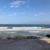 Ocean Dolphins | Massage Music, Awakening Sounds, New Age Healing by Zen Music Garden