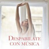 Despabilate con música by Various Artists