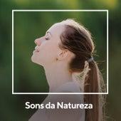 Sons da Natureza de Sons da Natureza