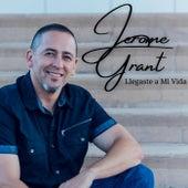 Llegaste a Mi Vida de Jerome Grant