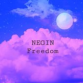 Freedom by Negin