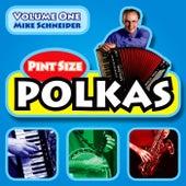Pint Size Polkas, Vol. One de Mike Schneider