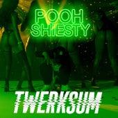 Twerksum by Pooh Shiesty