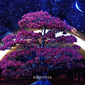 Essentia by Andry