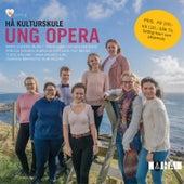Hå kulturskule - Ung Opera de Various Artists