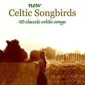 New Celtic Songbirds by Various Artists