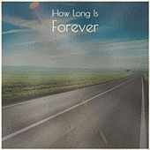 How Long Is Forever by Pee Wee King, Jesse Presley Fraley, The Stanley Brothers, John Davis and the Georgia Sea Island singers, Marty Robbins, Willie Nelson, Ernie Maresca, Ella Mae Morse, Koko Taylor