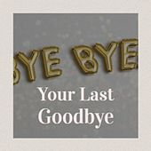 Your Last Goodbye von Jeannie Seely, Carl Smith, Loretta Lynn, Brenda Lee, Floyd Cramer, Otto Brandenburg, The Channels, Dr. H. Bate, Solomon Burke, Stonewall Jackson