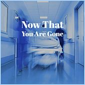 Now That You Are Gone de Various Artists