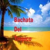 Bachata del Tropico de Antony Santos, El Brody, El Danny, Frank Reyes