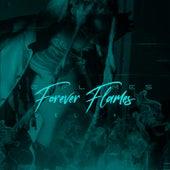 Forever Flames (Deluxe) de 10 Flames