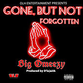Gone, but Not Forgotten by Big Omeezy