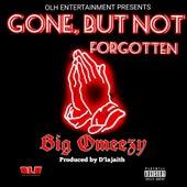 Gone, but Not Forgotten de Big Omeezy