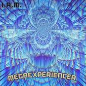 MEGAEXPERIENCER by IAM