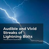 Audible and Vivid Streaks of Lightning Bolts de Sounds of Thunderstorms