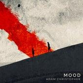 Mood (Acoustic) de Adam Christopher