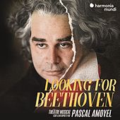 Looking for Beethoven de Pascal Amoyel