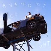 ANATOMY OF LIGHT von AaRON