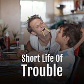 Short Life Of Trouble von Various Artists