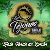 Mata Verde De Limón de Los Tejones Del Arroyo