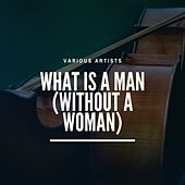 What Is a Man (Without a Woman) de The Marvelettes, The Downbeats, The Miracles, Marvin Gaye, The Twistin' Kings, Henry Lumpkin, Mary Wells, Mickey Woods