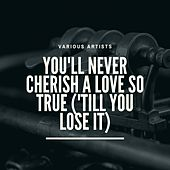 You'll Never Cherish a Love So True ('till You Lose It) de Martha Reeves, The Vandellas, Mary Wells, The pirates, The Temptations, The Vells, Little Stevie Wonder, Clarence Paul, The Marvelettes, The Charters