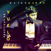 Prácticas De Vuelo by Elías Manzo