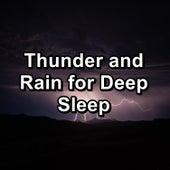 Thunder and Rain for Deep Sleep by Baby Sleep Sleep