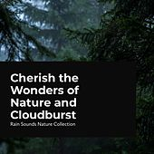 Cherish the Wonders of Nature and Cloudburst by Rain Sounds Nature Collection