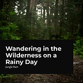 Wandering in the Wilderness on a Rainy Day von Deep Rain Sampling