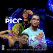 Yo la Pico (Remix) von Jeison El Mono