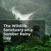 The Wildlife Sanctuary on a Somber Rainy Day von Deep Rain Sampling