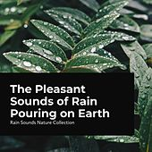 The Pleasant Sounds of Rain Pouring on Earth by Rain Sounds Nature Collection
