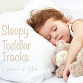 Sleepy Toddler Tracks Classical Mix de Various Artists