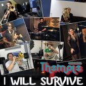 I Will Survive de Themple Band