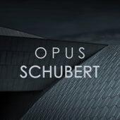Opus Schubert by Franz Schubert