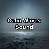 Calm Waves Sound von Sea Waves Sounds