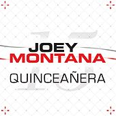 Quinceañera de Joey Montana