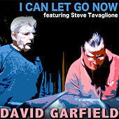 I Can Let Go Now by David Garfield