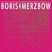 2R0I2P0 de Boris