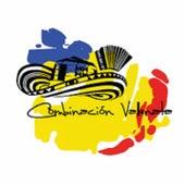Combinación Vallenata von Binomio de Oro de América, El Gran Martín Elías, Kaleth Morales, La Combinación Vallenata, La Tropa Vallenata, Los Chiches Vallenatos, Los Embajadores Vallenatos, Los Gigantes Del Vallenato, Miguel Morales, Patricia Teherán