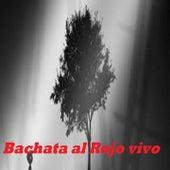 Bachatas al Rojo Vivo de Juan Bautista, Juan Francisco, Kiko Rodriguez, Leonardo Paniagua, Luiggy Luiggy, LUIS MIGUEL DEL AMARGUE