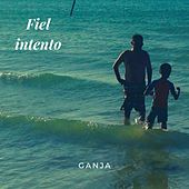 Fiel Intento (Vintage Version) by Ganja