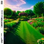 Creation (AFO Remix) di Mariannah y Diego